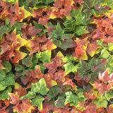 Уф защита зеленых вертикальной стены сад искусственных синтетических листвы листьев растений по благоустройству стиле использования