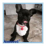 De Juwelen van de Markering van de Hond van de Douane van de Markering van de hond