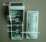 2 PIR IP65水証拠のペット免除(OSD-40DP)の無線屋外の太陽動力を与えられた行動探知機