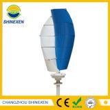 100W 나선형 Vawt 100W 12V 24V 수직 축선 바람 터빈 발전기