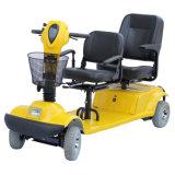 De Elektrische Autoped van twee Zetels met Dak Eml46h