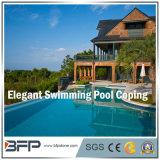 China Pedra Natural / Granito para Piscina de Coping / Pool Coping