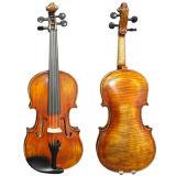 Le satin jaune brun flamme Nice Maple Stradivarius violon avancé