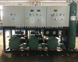 Novo design do quarto frio/armazenagem de frutas de produtos hortícolas de processamento de Marisco de carne