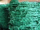 Filo rivestito del PVC o galvanizzata per la rete fissa