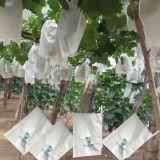 OEM de lucha contra el insecto a prueba de agua de frutas Bolsa desechable papel creciente
