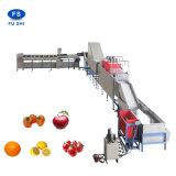 De Lijn van de Fruitverwerking/Mango/Kalk/het Oranje het Schoonmaken het In de was zetten Drogen en Sorteren