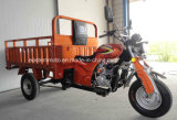 200cc triciclo del motociclo della rotella della fabbrica tre