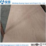 1220*2440*12mm álamos Core para muebles de madera contrachapada de Cedro Lápiz