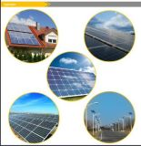 Panneau solaire polycristallin 100W avec TUV/certificat CE