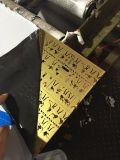 Bord fendu Tôles en acier inoxydable laminés à froid (couleur feuille)