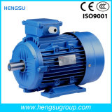 Water Pump를 위한 IP55 F B5 Frame 71-355의 Ye2 Three Phase Electrical Motor