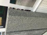 Mattonelle nere della pietra del granito di Binzhou
