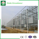 中国の製造業者Poのフィルムの商業農業のマルチスパンの温室