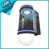 Dsk Curiosités ascenseur avec bonne décoration