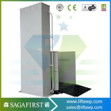 1.5m inländischer Haupttreppen-Sperrungs-Aufzug des gebrauch-250kg
