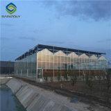 PC- Blad die Materiële Serre voor Landbouw behandelen