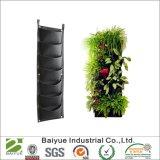 La pianta d'attaccatura verticale coltiva le caselle del sacchetto 7 per la verdura del fiore