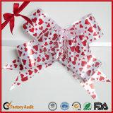 주문 줄무늬 PP 선물 나비 풀 활