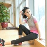 Le sport à séchage rapide de haute qualité fabriqués en Chine de chemise