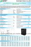 SBB, das Apparatebatterie 6V4ah mit CER RoHS UL wiegt
