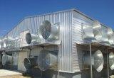 Modèle automatique de Chambre de ferme avicole de grilleur avec de pleins matériels