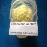Hormona esteróide anabólica de amontoamento do esteróide da pilha do ciclo da estaca do acetato de Trenbolone