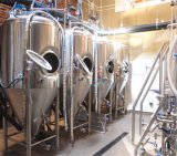 Sistema di chiave in mano di Homebrew della strumentazione della fabbrica di birra dell'acciaio inossidabile