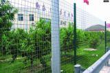 PVCはEurofenceによって溶接された金網の塀に塗った