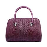 Nuovo sacchetto di Tote della signora Hangbag Customized Crocodile Leather del progettista 2017
