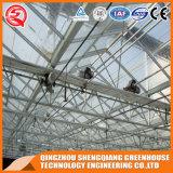 China-Landwirtschafts-Gemüsegarten-ausgeglichenes Glas-Gewächshaus