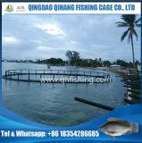 イズミダイの育成の使用のための栽培漁業のタンクかケージ