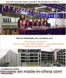 Я сделаны в цене Китая черного кожаный браслета с цветастые браслетом CZ 925 серебряным (BT6768)