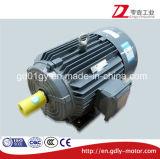 moteur asynchrone triphasé de 220V/380V/415V/660V 50Hz/60Hz avec IP55 et isolation de classe de F