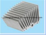Il blocco per grafici di alluminio dell'espulsione si è sporto prodotti di alluminio