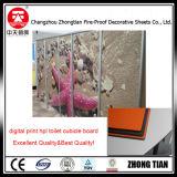 La fabricación profesional de la partición de baño laminado compacto