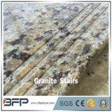 Pisada del granito de la mariposa de G860 Gillio para el suelo y escalera y paso de progresión en chalet