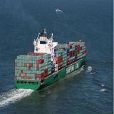 중국에서 남아메리카에 직업적인 바다 출하
