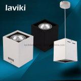 MAZORCA montada superficie LED Downlight con la luz de techo pendiente 5With7With10With15With20With30W para los departamentos, iluminación interior
