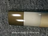 De satijn Geanodiseerde Uitdrijving van het Aluminium/van het Aluminium van Champagne