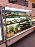 Refrigerador de ar aberto vegetal comercial do refrigerador