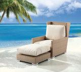 Rattan del giardino/sofà di vimini della mobilia impostato (LN-2142)
