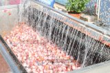 세륨 승인 Mstp-1000 식물성 당근 Peeler 껍질을 벗김 세탁기