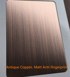 Plaque décorative antique de feuille d'acier inoxydable de Claded d'en cuivre de type