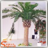 庭の装飾の人工的なナツメヤシのプラント木