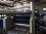 PE Geomembrance/Geocell de vente d'usine faisant la machine