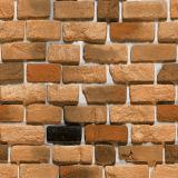 De rustieke Tegels van de Bakstenen muur