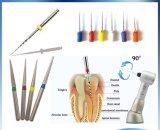 歯科内部のNitiの回転式根管用ファイル25mm