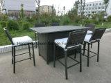 옥외 고리 버들 세공 의자 세트
