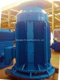 Motor de CA de indução assíncrono de gaiola de esquilo trifásico de grande tamanho